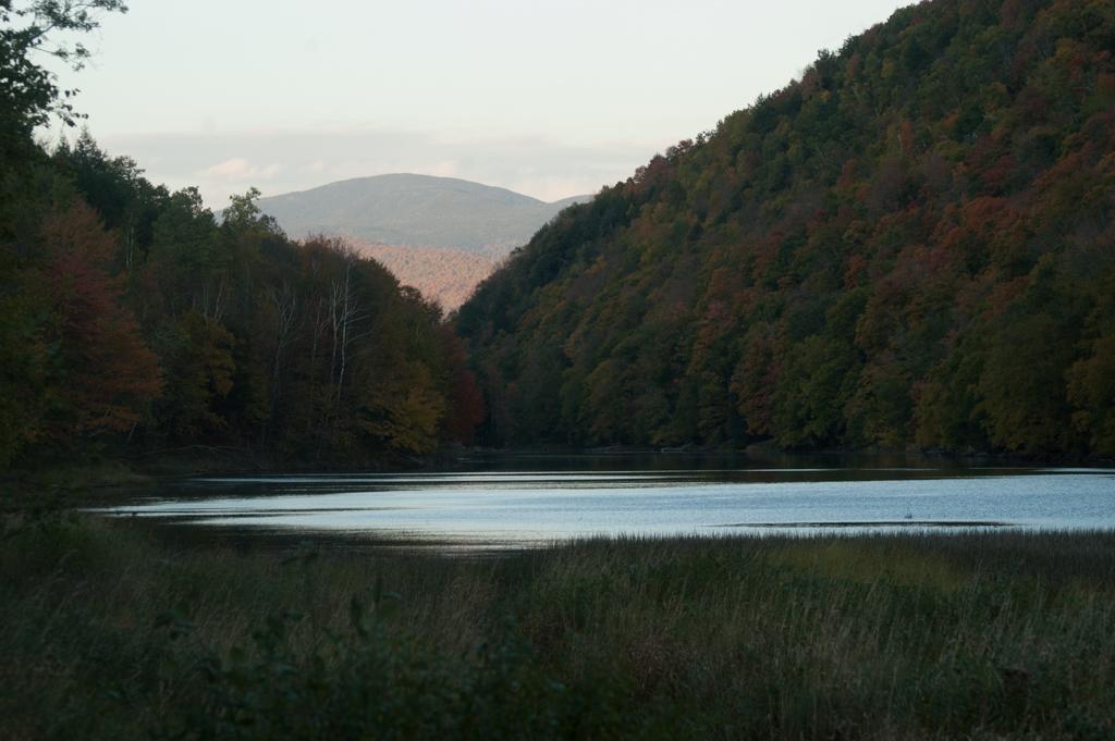 Gillete pond_